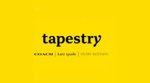 TapestryLOGO设计