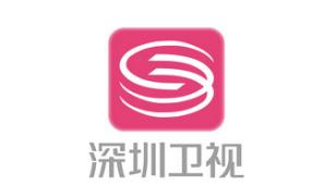 深圳卫视LOGO设计