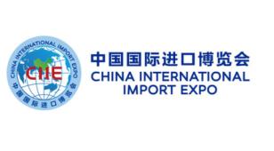 中国国际进口博览会LOGO设计