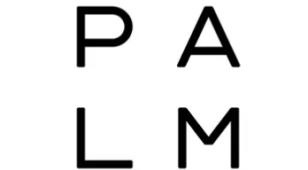 PalmLOGO设计