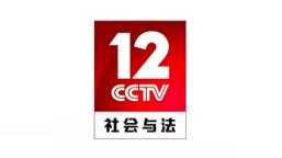 CCTV12社会与法LOGO设计