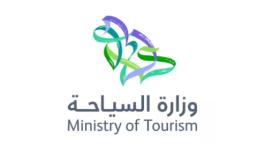 沙特阿拉伯王国LOGO设计